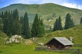 Hüttenurlaub - Stille wahr nehmen in einem urigen Ferienhaus